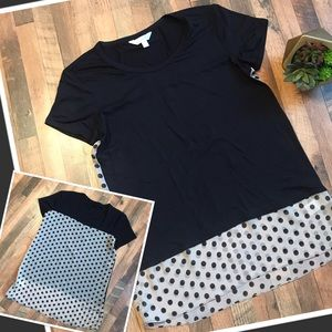 Soft Semi Sheer Polka Doted High Low Blouse Top